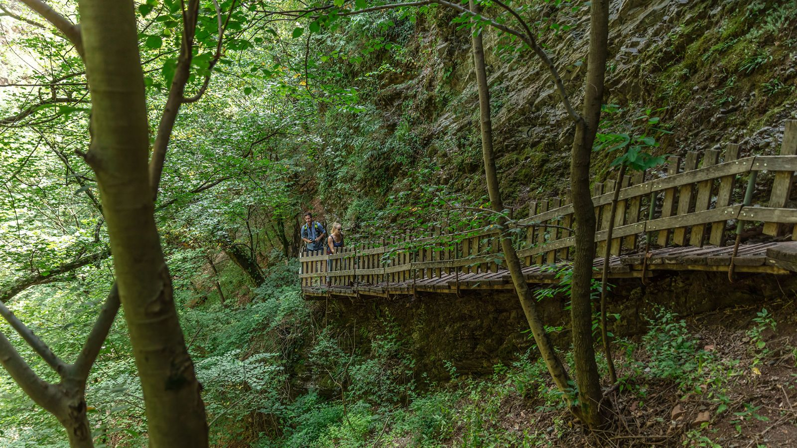 Hiking trail in the Breggia Gorge Park.