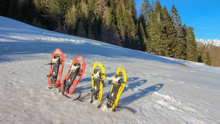 5 winter excursions