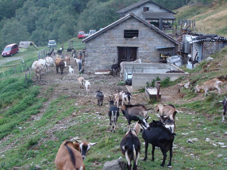 Image 0 - Agriturismo Alpe Zalto