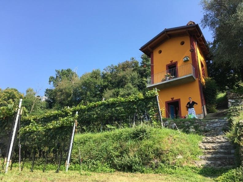 Image 4 - Cantina Cavallini