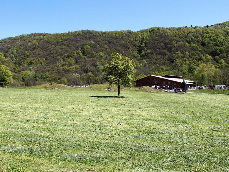 Image 4 - Azienda Agricola Marco e Isa Scoglio