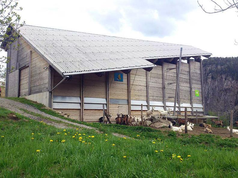 Image 7 - Agriturismo Alla Meta