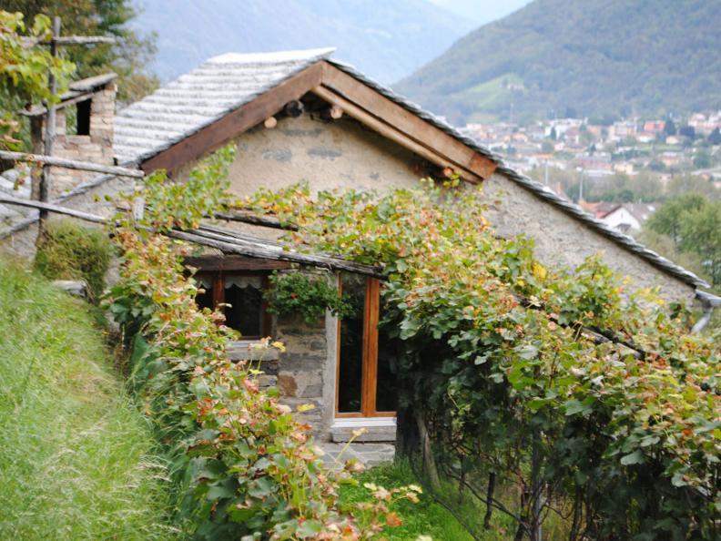 Image 0 - Wine cellar Magiro