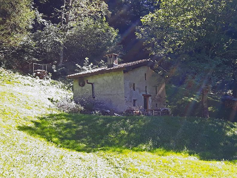 Image 3 - Fattoria agricola Bio di montagna