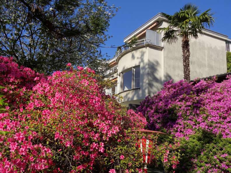 Image 1 - Paradiso di vacanza - Villa Primavera nr. 11 + 12
