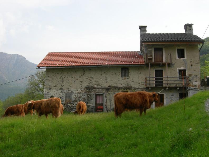 Image 1 - Casa Ugo
