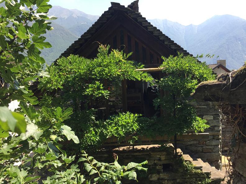 Image 1 - Casa Studer