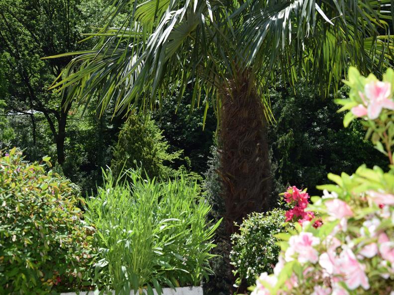 Image 9 - Villa Siesta Park