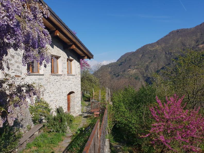 Image 1 - Al Forno Vacanze