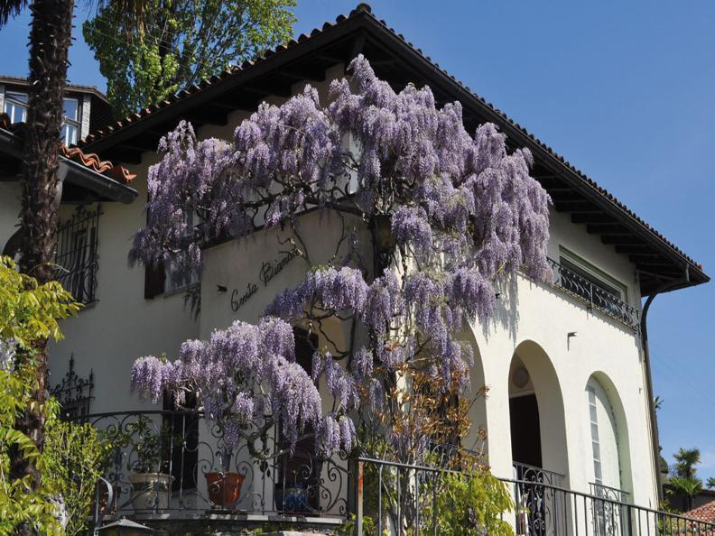 Image 0 - Villa Cresta Bianca