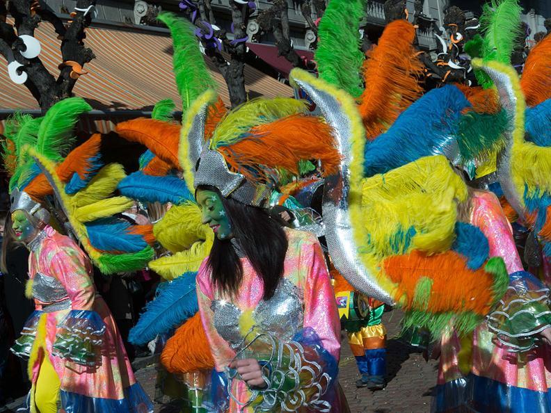 Image 2 - Carnival in Ticino 2019