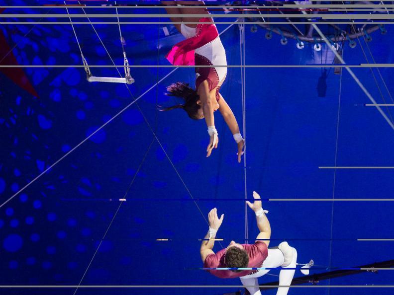 Image 2 - Circus Nock