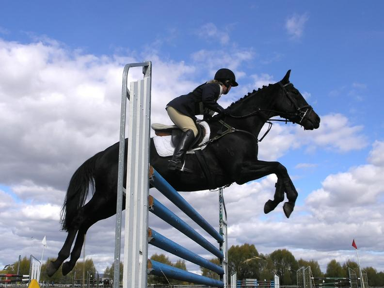 Image 0 - Horse jumping competition
