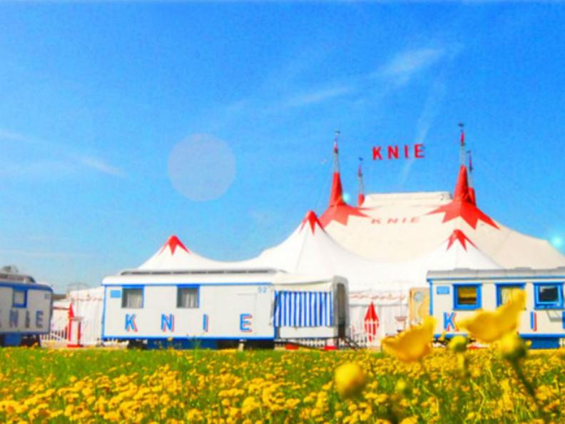 Image 1 - Knie Circus 2019