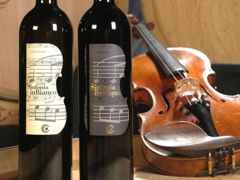 Image 0 - Open wine cellars Chiericati Vini