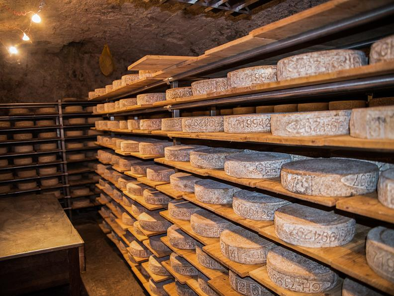 Image 0 - Open cheese factories