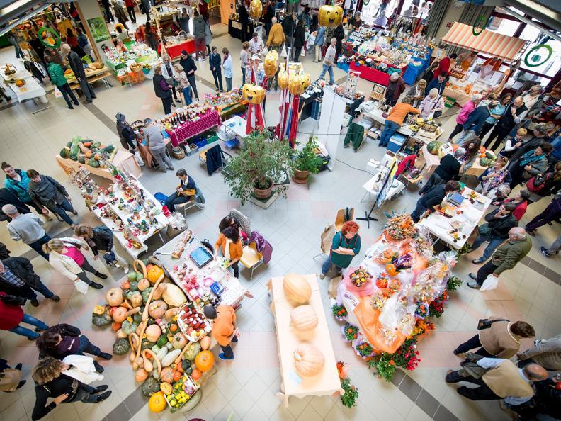 Image 0 - Pumpkin's fair