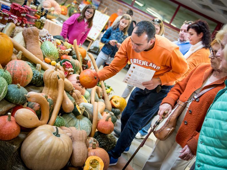 Image 4 - Pumpkin Festival!