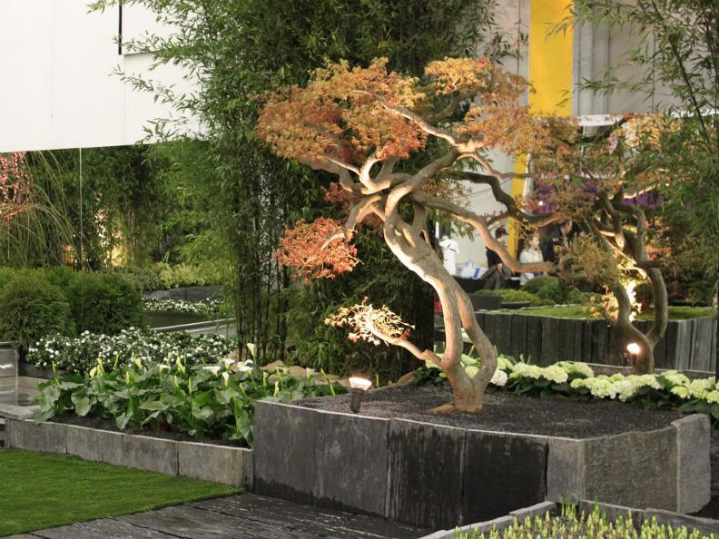 Image 1 - Flora & Bosco Ticino