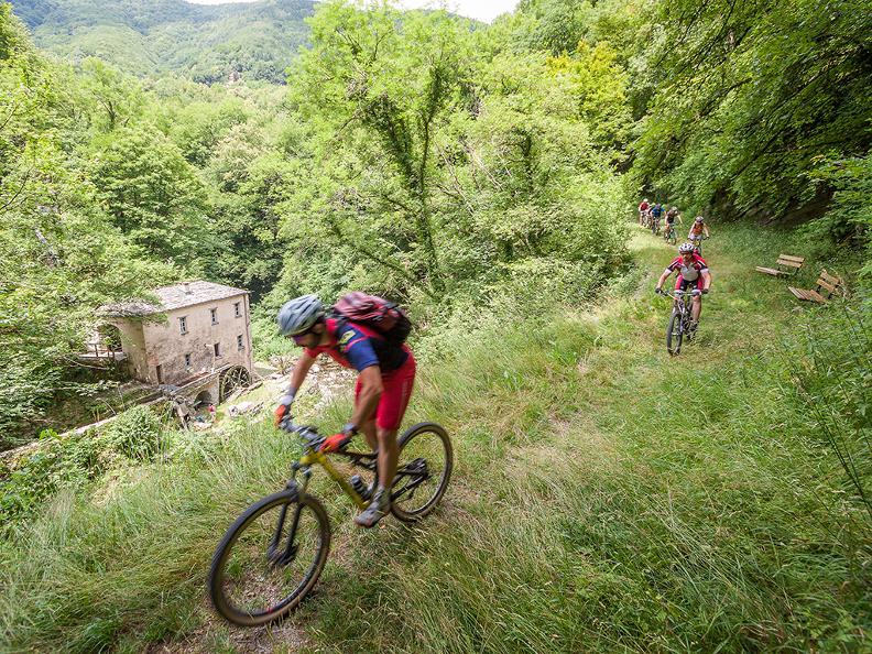 Image 6 - Sunrise Tour Monte Generoso 2018