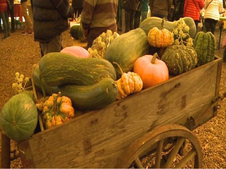 Image 2 - The Pumpkin market - 5th edition