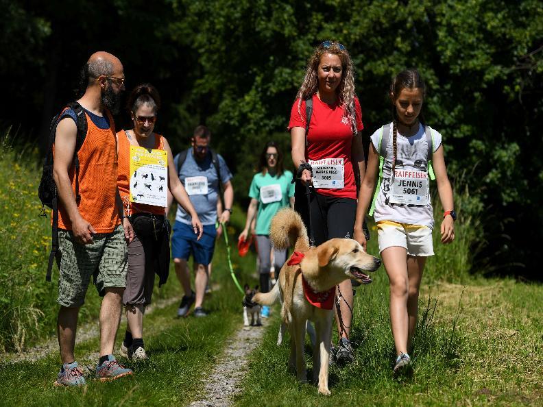 Image 1 - Walking Mendrisiotto