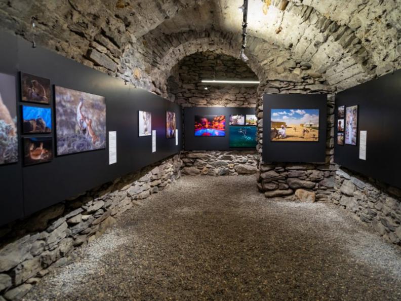 Image 1 - World Press Photo Exhibition 2021