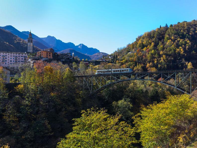 Image 1 - The foliage-train