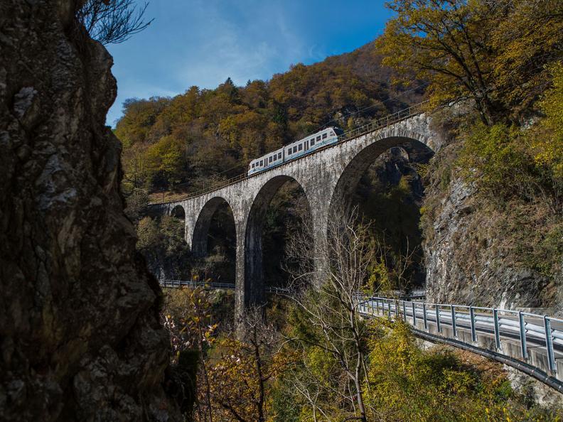 Image 2 - The foliage-train