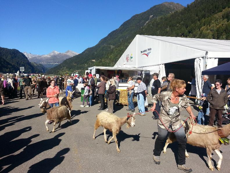 Image 2 - Agriculture and cheese fair in the Leventina Valley