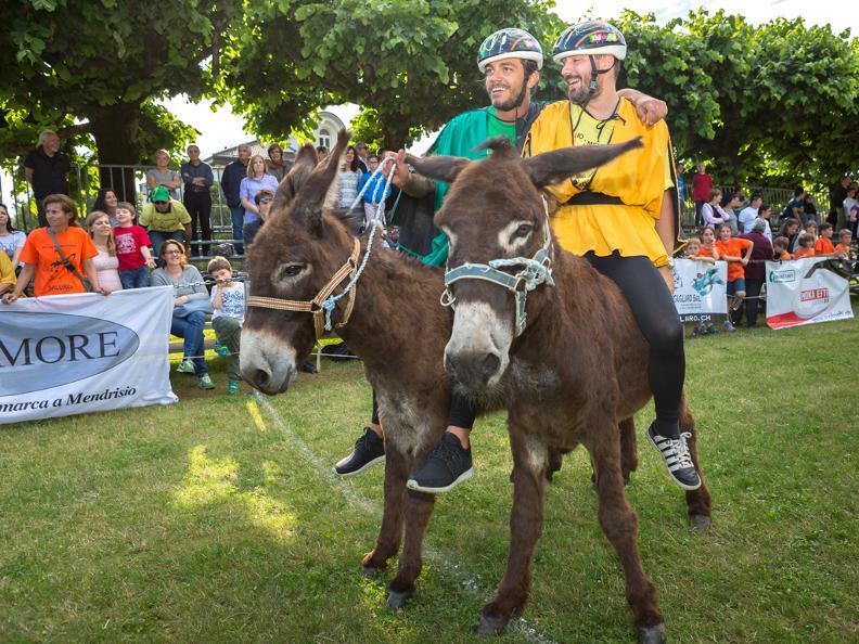 Image 5 - Eselrennen
