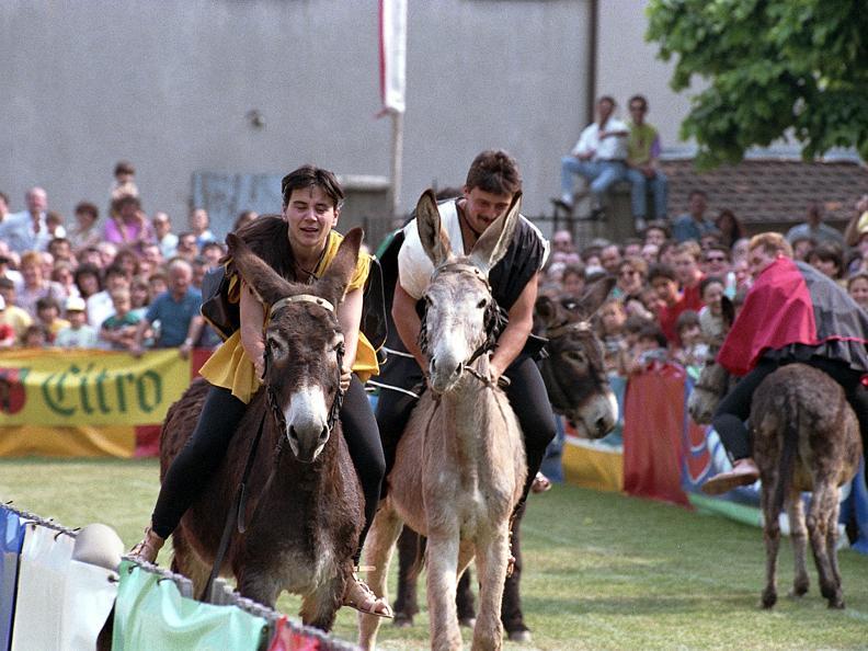 Image 4 - Eselrennen