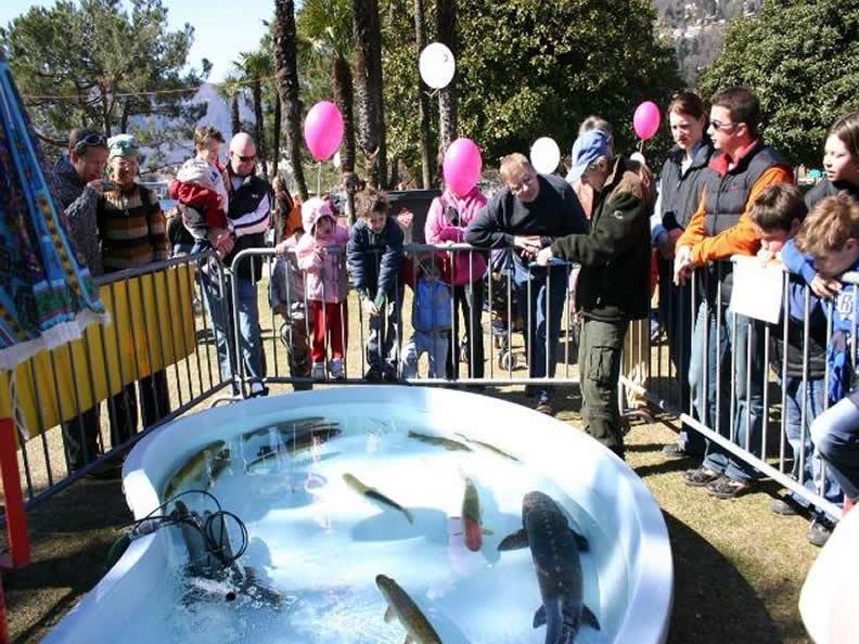 Image 1 - Fish festival