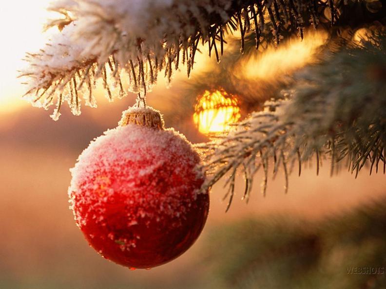 Image 0 - Christmas Market Biasca