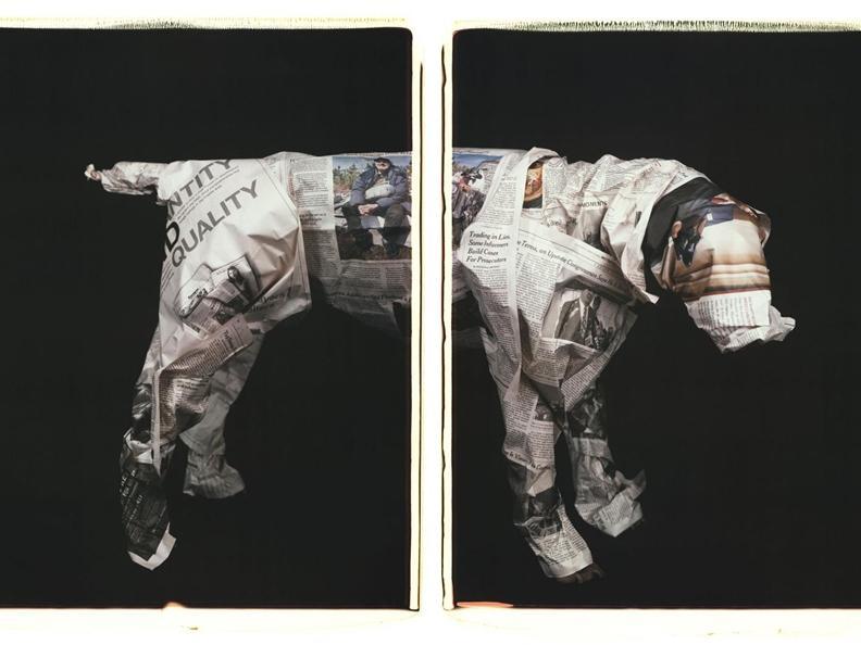 Image 3 - William Wegman. Being Human