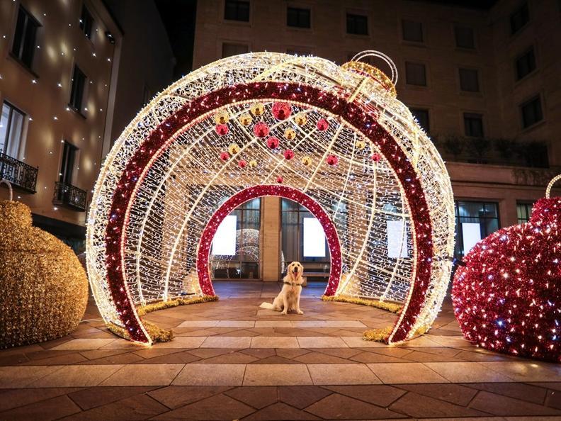 Image 15 - Christmas lights in Lugano
