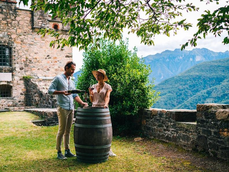Image 2 - Open wine cellars days