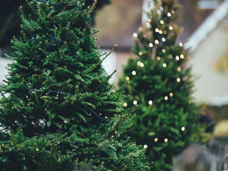 Image 2 - Christmas Market Campo Blenio