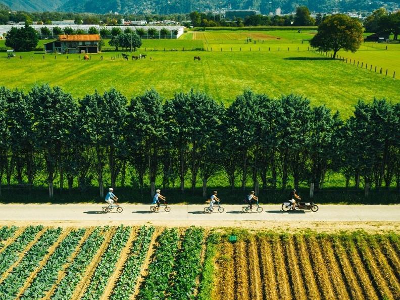 Image 4 - Eine köstliche Radtour in der Magadinoebene