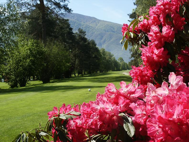 Image 5 - Golf Ascona