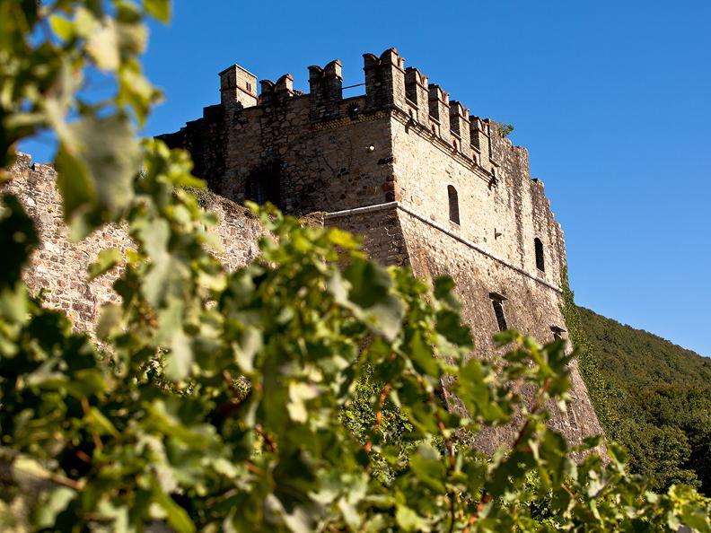 Tenuta Castello di Morcote | ticino ch