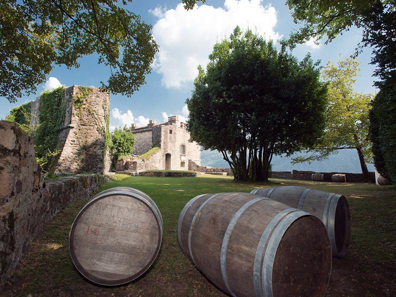 Image 4 - Tenuta Castello di Morcote