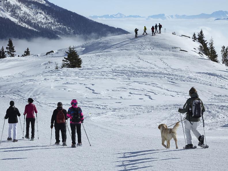 Image 0 - Itinéraire en raquettes de neige Carì – Prodör – Predelp – Carì