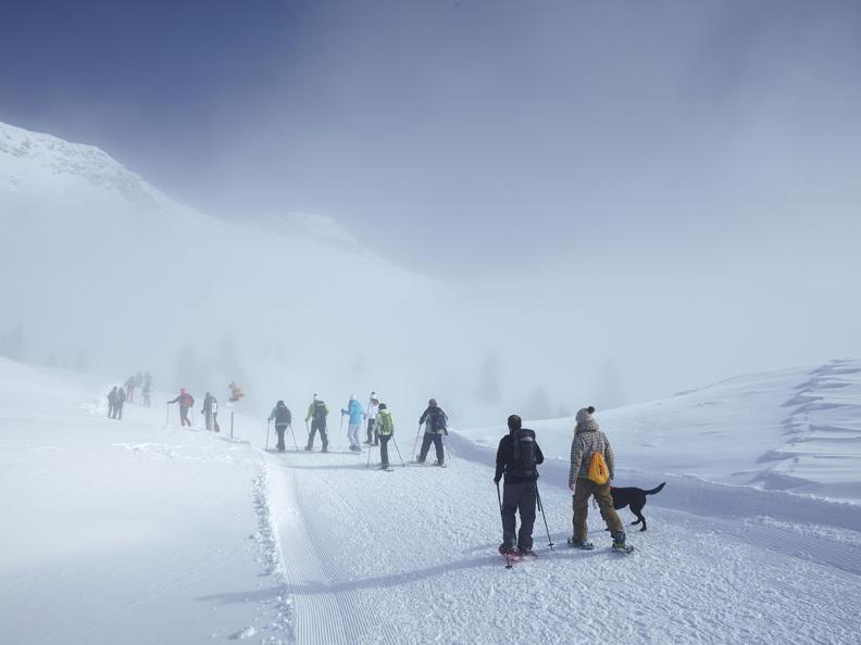 Image 1 - Snowshoe trail Carì – Prodör – Predelp – Carì