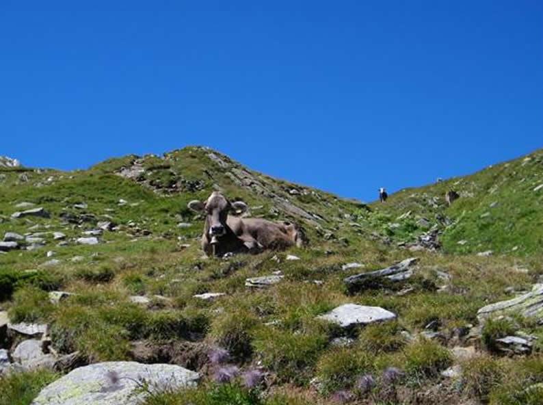 Image 1 - On the way to three mountain lakes