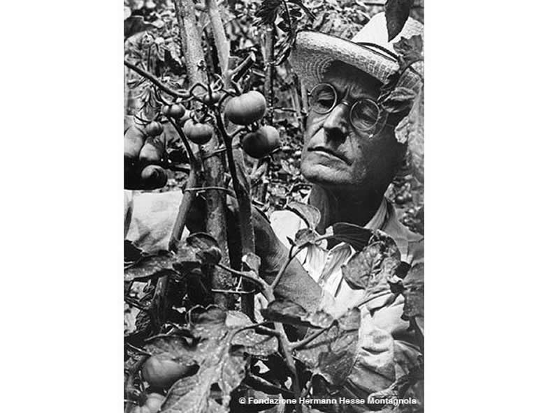 Image 3 - Hermann Hesse: a personality, a story. Let's follow his path