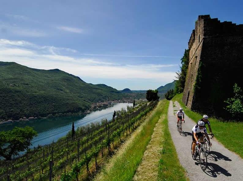 Image 1 - Itinéraire à travers les vignes