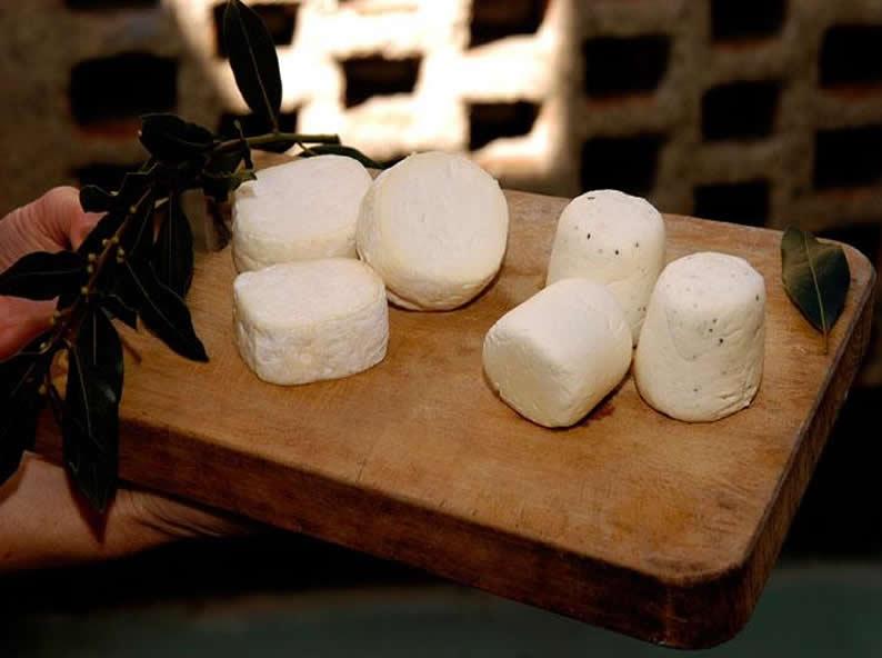 Image 0 - Tasting genuine cheeses
