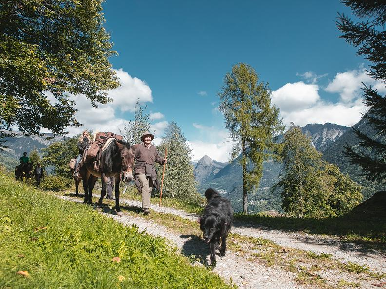 Image 0 - SOMARELLI - Trekking and adventure with animals
