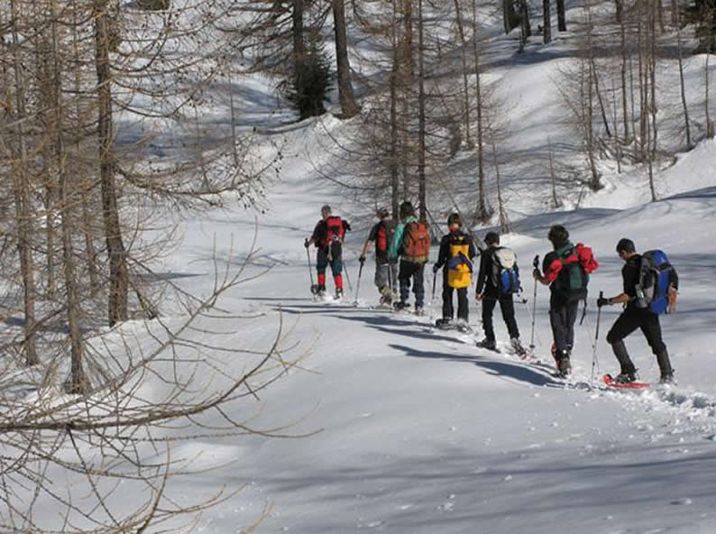 Image 1 - Discover what Bosco Gurin has to offer outside of the slopes in winter!
